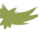 A Sacred Bird